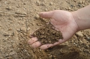 spring garden testing the soil