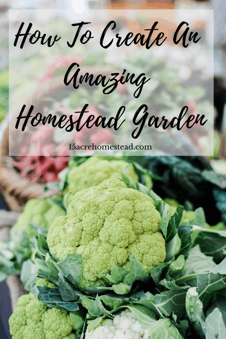 Designing an awesome homestead garden is simple when you follow these simple tips and tricks.