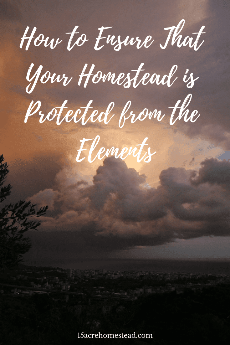 If you want to ensure that your homestead is protected from the elements, try out these simple tips! From preparing for the worst to creating windbreaks on your land, there are many ways to ensure that Mother Nature's wrath doesn't hit you too hard.