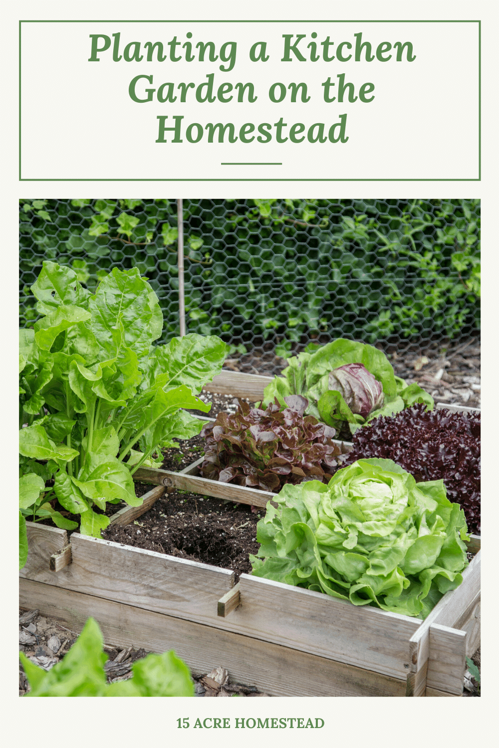 Do you have a kitchen garden on your homestead? Check out this post to find out how to get started with one today! Includes a free printable.