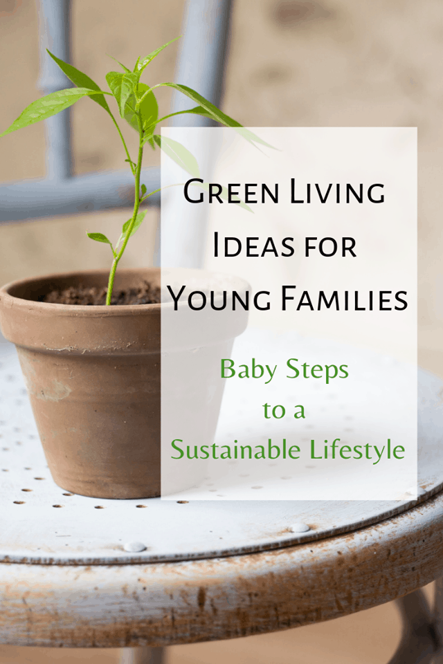 Finding green living ideas for young families may sound challenging, or maybe it seems like it's only for families willing to go to extremes.