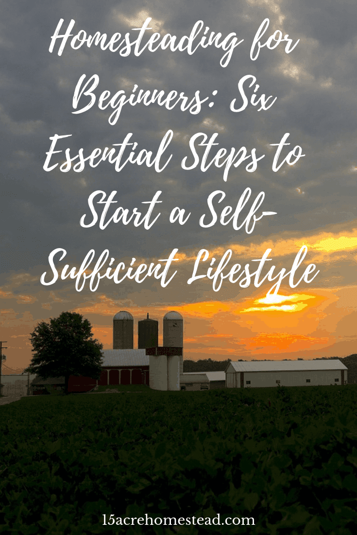 THere are some simple steps you can take to lead a self-sufficient lifestyle even as a beginner homesteader.