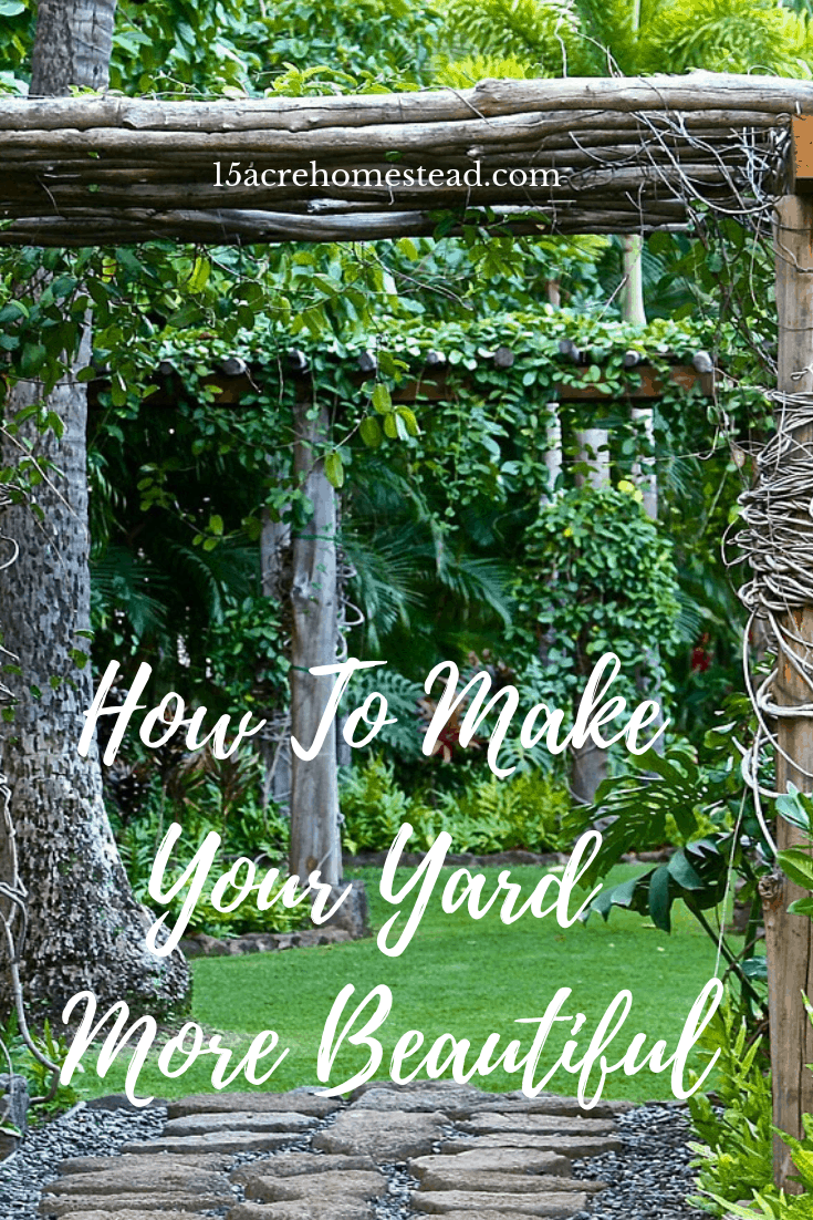 THere are so many ways you can make your yard more beautiful. From flowers to a water feature, the opportunities are endless.