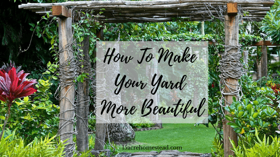 how to make your yard more beautiful