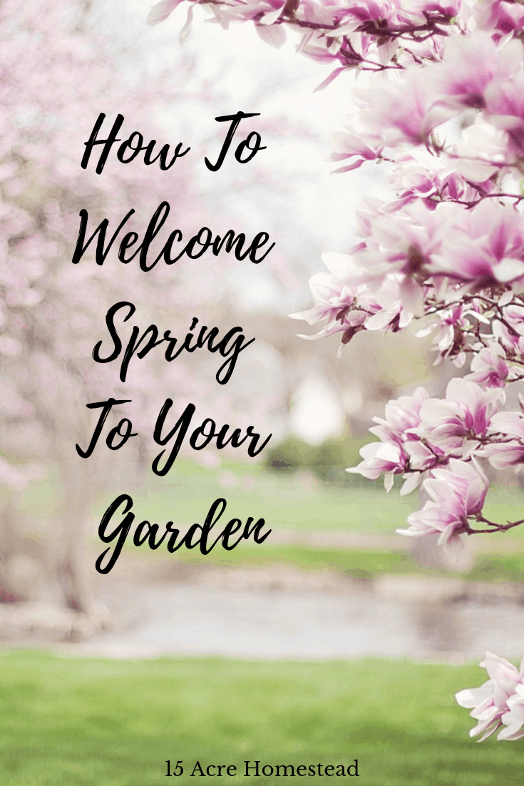 Spring is a great time to prepare your garden on your homestead.