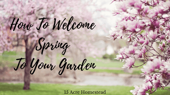 How to welcome Spring