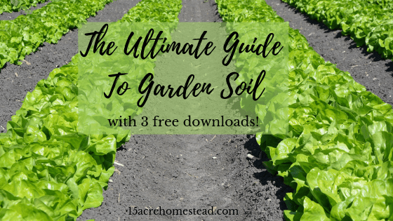 Ultimate guide to garden soil
