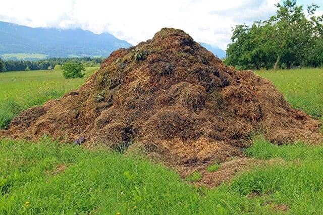 Large compost pile set away from other gardens and structures
