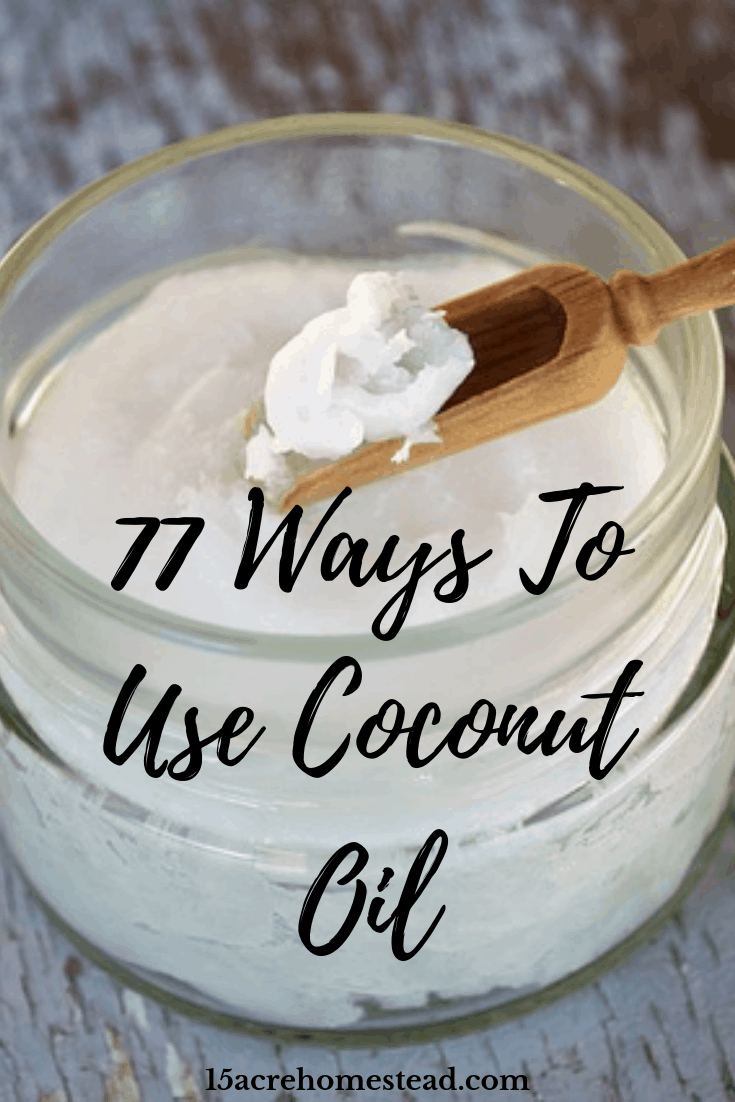 Coconut oil has to be the most versatile product on the planet. It is healthy for humans and animals, isn't expensive, and a little goes a long way.