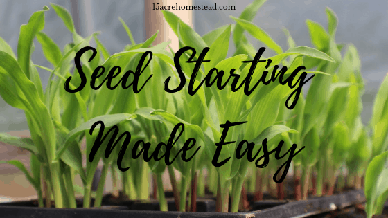 seed starting made easy