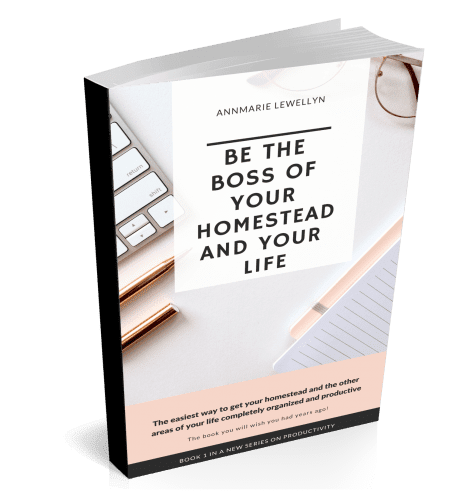 Be The Boss Of Your Homestead and Your Life