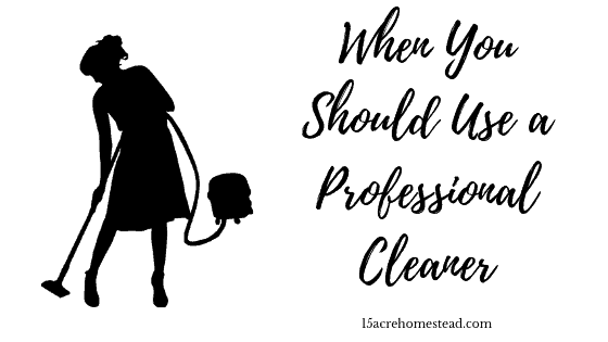 When You Should Use A Professional Cleaner