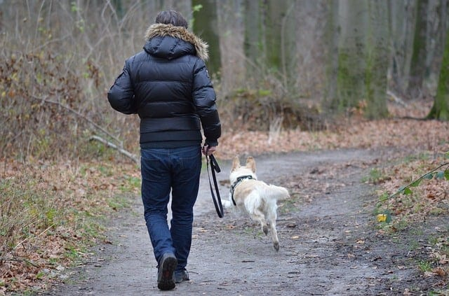 Man walking a dog outside in the woods