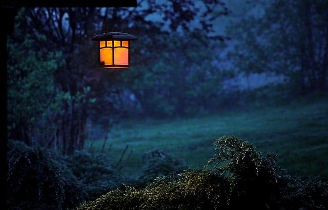 garden light in the yard