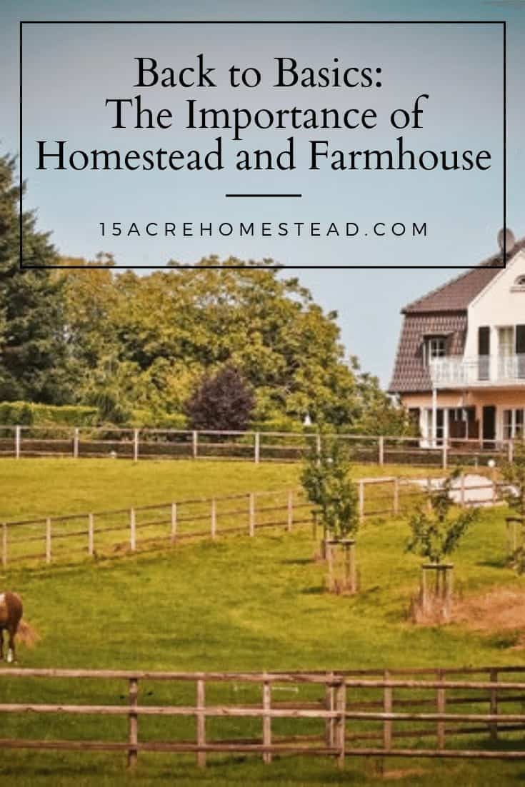 If you too want to go back to basics and rediscover the benefits of homestead and farmhouse, here are some of the reasons why these things are still so important in this day and age.