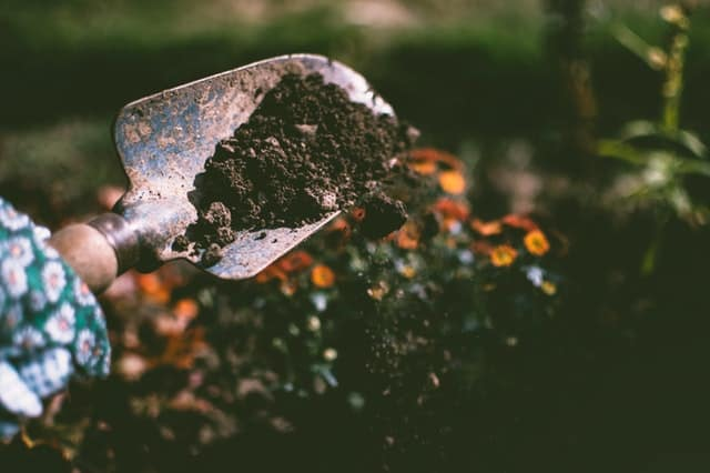 close up view of topsoil in hand