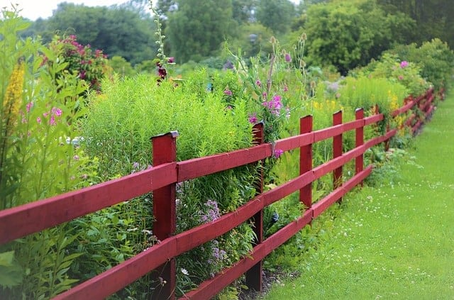 How to Make An Attractive Yard: 3 Genius Ideas - 15 Acre ...