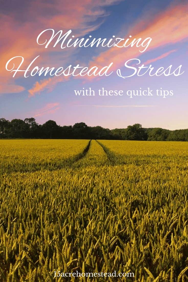 Use these quick tips to start minimizing homestead stress from your life right now.