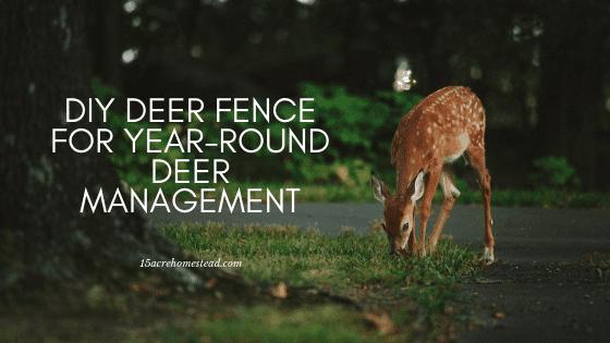 DIY Deer Management
