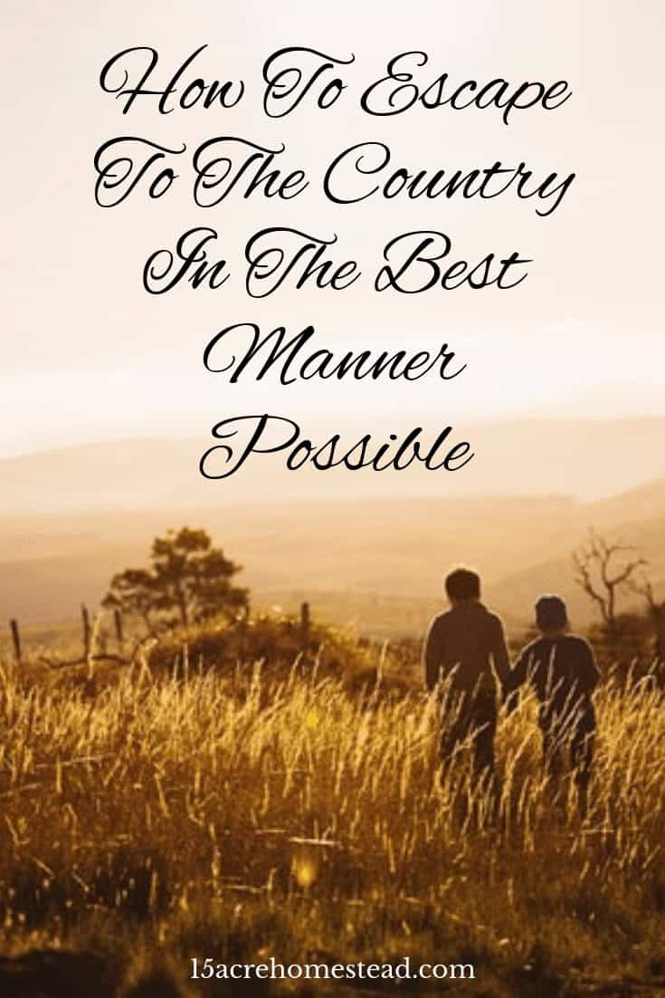 Are you ready to leave city life and delve into living in the country? Read on to find out the benefits and pick up some tips on the way!