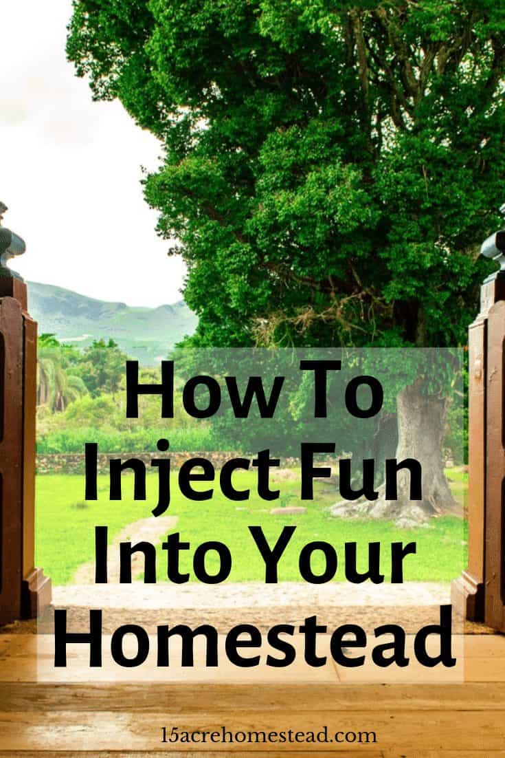 Learn many ways you can inject some fun into your homestead with these 3 tips.