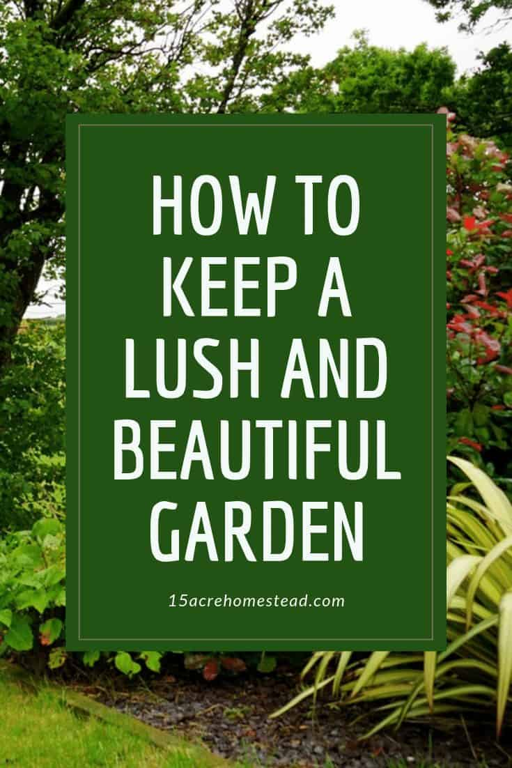 As long as you keep up regular maintenance and invest in the right new additions, it's entirely possible to grow and maintain something beautiful in your own backyard.
