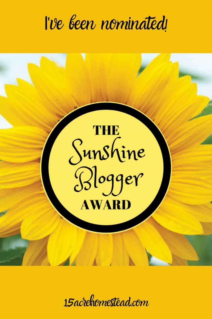 As bloggers, we go through our ups and downs. We meet challenges and we reap some really great rewards along the way! Today I am celebrating because I am honored to be nominated for the Sunshine Blogger Award! Read on to learn more about this reward and who I chose to nominate in return!