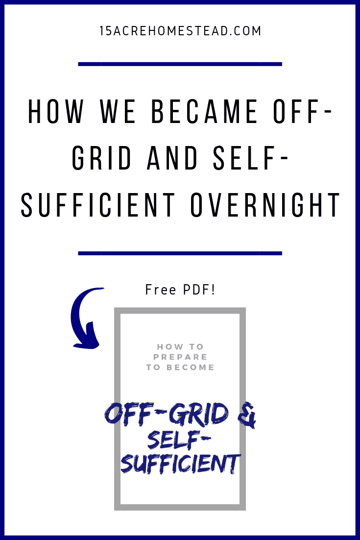 When the electric bill goes to almost 700 dollars and you can't find out why, you can't afford an electrician, and the power company won't help, what do you do? You become off-grid and self-sufficient OVERNIGHT!