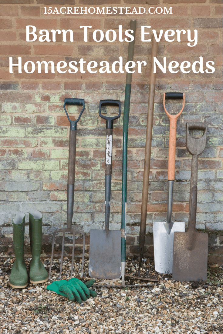 Check out this must-have list of barn tools every homesteader should own!