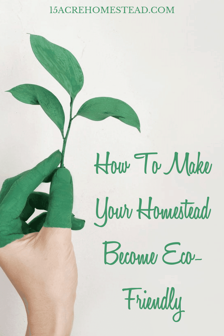 Use these simple and easy tips to make your homestead more eco-friendly!