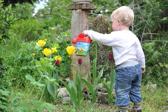 Toddler using a watering can to water the flowers