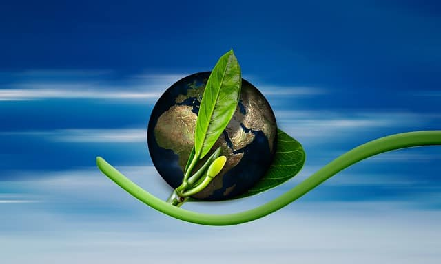 Earth with green branch in front of it