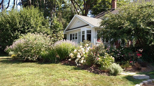 Native plants surrounding front of house