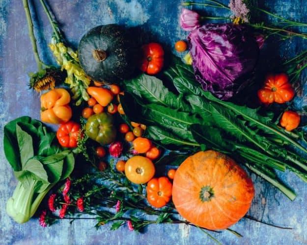 A harvest of vegetables