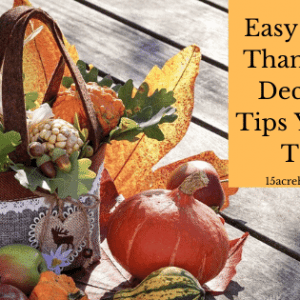Easy and Fun Thanksgiving Decorating Tips You Need To Try
