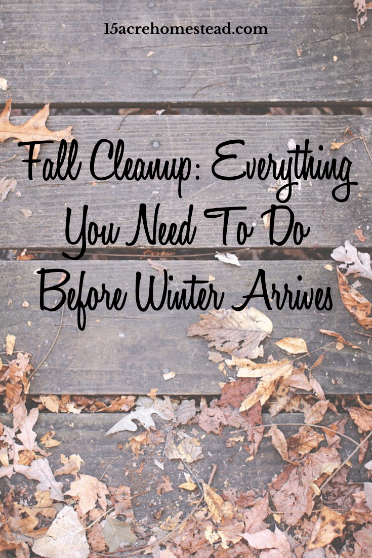 Learn some quick and easy ways to perform a fall cleanup on your homestead today with these quick and easy tips!
