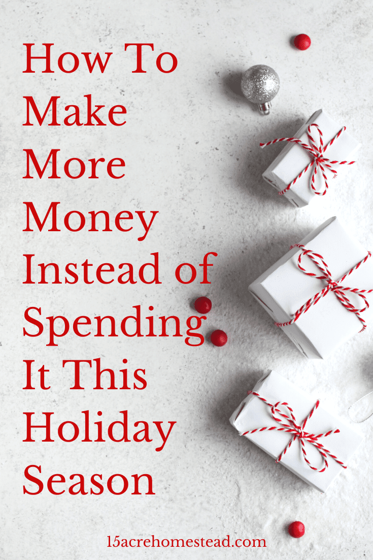 Looking for some ideas to help you make more money than you spend this holiday season? Then check out these brilliant but easy business ideas right now and start making money instead of spending it!