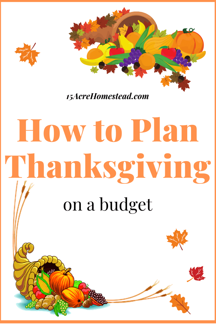 Don't stress over planning a huge party at Thanksgiving because you think you can't afford it! Let's learn how to plan your Thanksgiving on a budget and still be able to enjoy the holiday and look like money was no option!