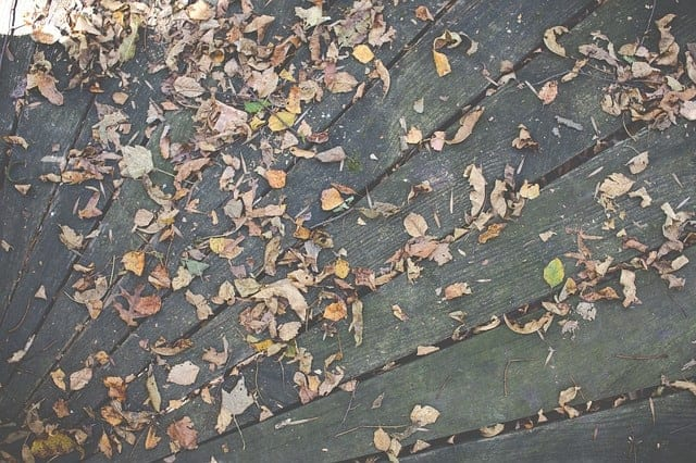 Deck covered in leaves