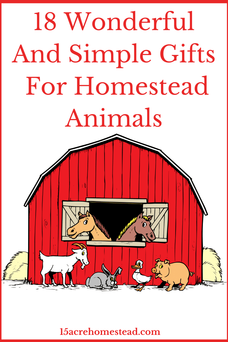 Here are some great and simple gift ideas for your homestead animals this Christmas!