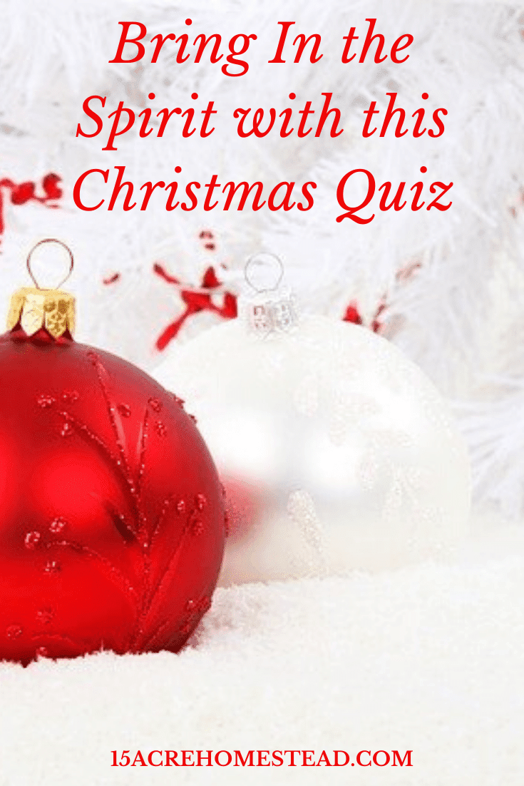 Gather up the family and take this fun Christmas Quiz to see how much you know about the most festive time of the year.