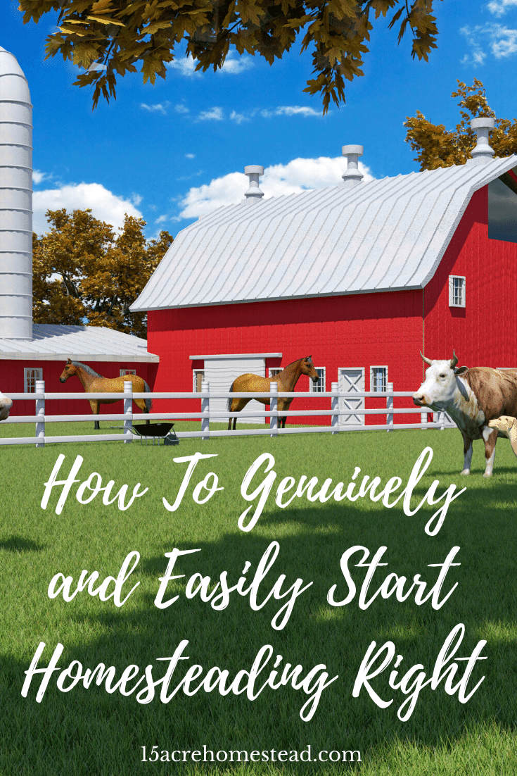 If you are wanting to start homesteading but don't know where to begin, this post will provide you with a guide towards a successful homestead journey from the start.