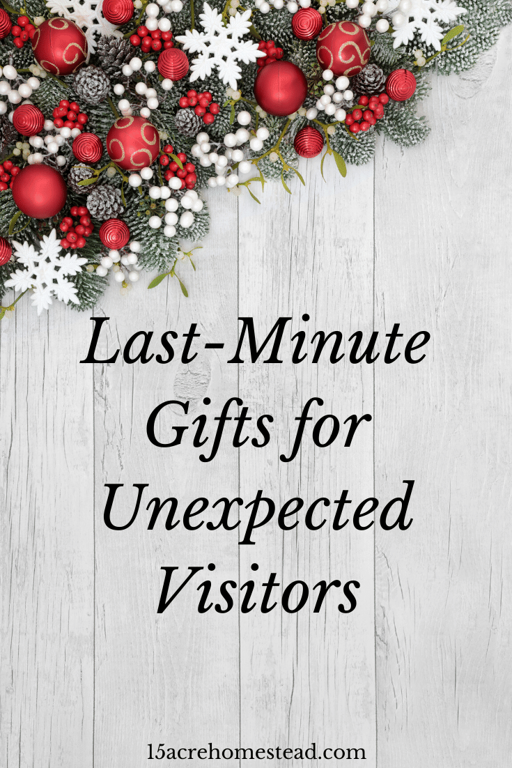 Don't panic when you get unexpected visitors at Christmas. Here are some gift ideas you can pick up while shopping that will work for anyone!