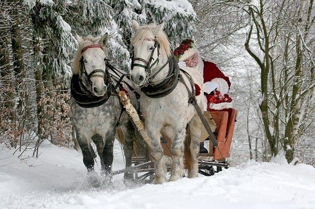 Homestead animals deserve santa visits!