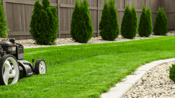 Mowing the lawn regularly keeps your lawn healthy.