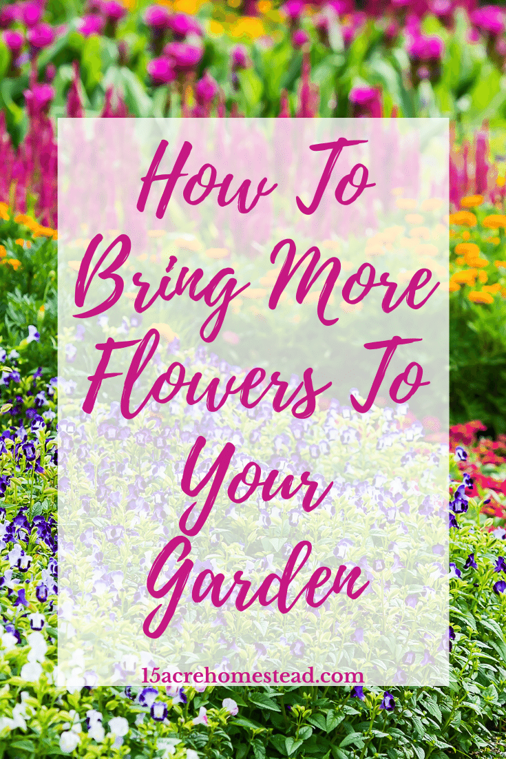 Bring more flowers to your gardens on your homestead with these easy to do tasks that will make any homeowner proud.
