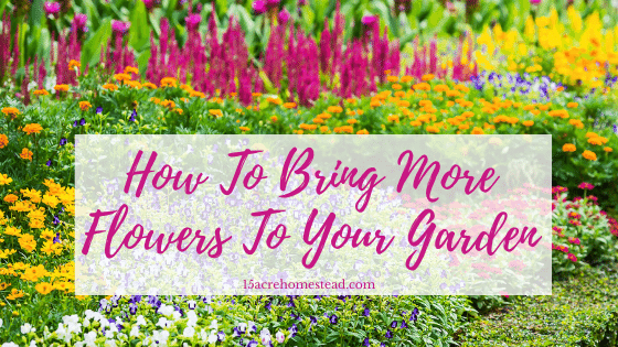 bring more flowers