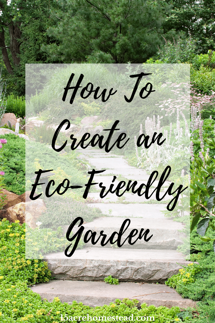 Are you looking to create an eco-friendly garden on your homestead? Then take these 5 considerations to mind for success.