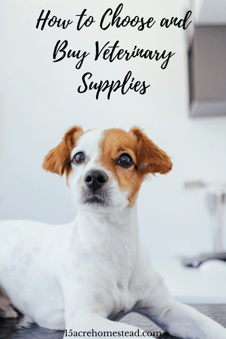 Check out these simple tips before you purchase your veterinary supplies for your homestead.