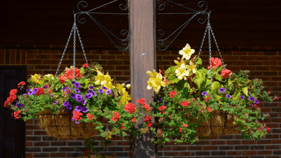 Hanging baskets are a great way to bring more flowers to the garden